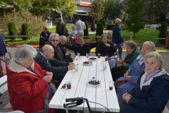 Kostanjev piknik - 22. 10. 2013