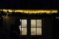 Novoletna stojnica - veseli december 2016