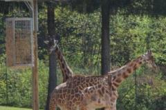 Obisk živalskega vrta - 15. 04. 2014